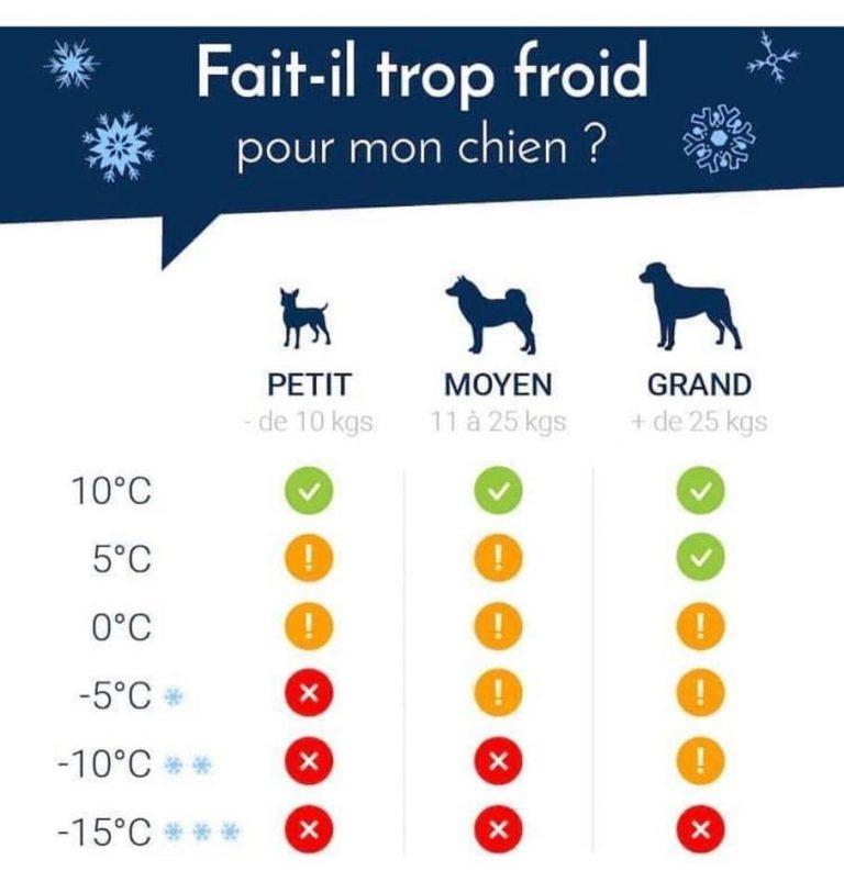 schémamontrant la résistance des chiens au froid
