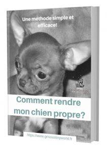 ebook comment rendre mon chien propre